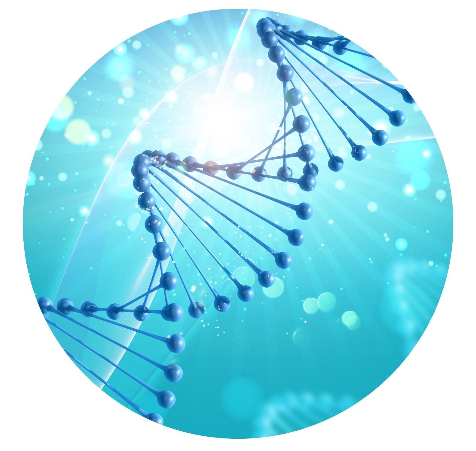 Biorésonance Biofeedback LIFE